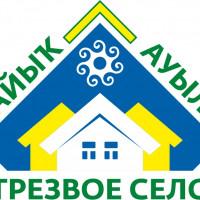 Староянбаевская сельская модельная библиотека организовала выставку «Здоровье- бесценный дар»