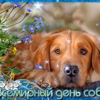 Детская модельная библиотека отмечает Всемирный день собак