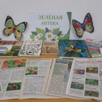 В Сейтяковской сельской библиотеке провели час полезной информации «Целительная сила растений»