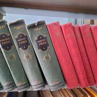 Центральная районная библиотека отмечает день рождения французского писателя Виктора Гюго