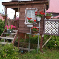 Балтачевская Центральная районная библиотека продолжает публикацию проекта «Мой цветущий сад»