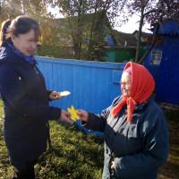 Нижнесикиязовская библиотека провела акцию «Кленовый лист- символ добра и уважения», посвященную ко Дню пожилых людей