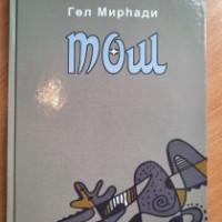 Балтачевская центральная библиотека предлагает новую книгу Гуль Мирхади «Тош»