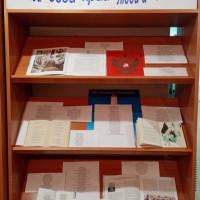 Асавская модельная библиотека отмечает День России